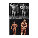 Poster - Dorian Yates Doppelbizeps - Poster 1
